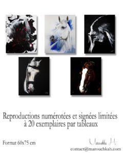 Reproductions numérotées et signées limitées à 20 exemplaires par tableaux format 60x75 cm